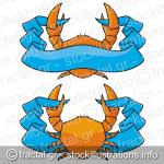 Crab with banner